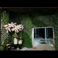 【吉林植物墙】【长沙植物墙】