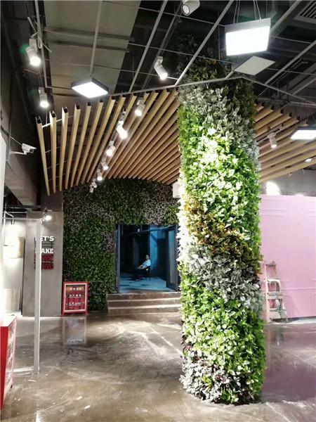 【安徽植物墙】【南昌植物墙】