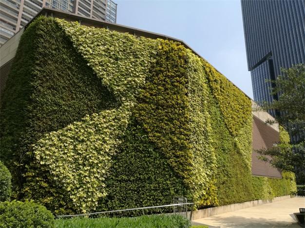 墙面绿化|植物墙|工商墙