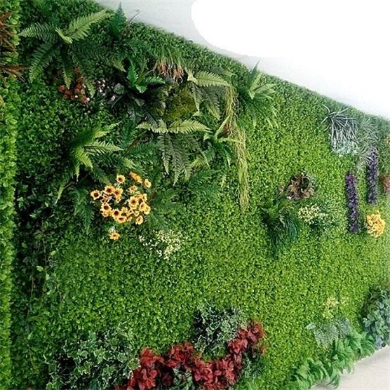植物墙|虚假绿化