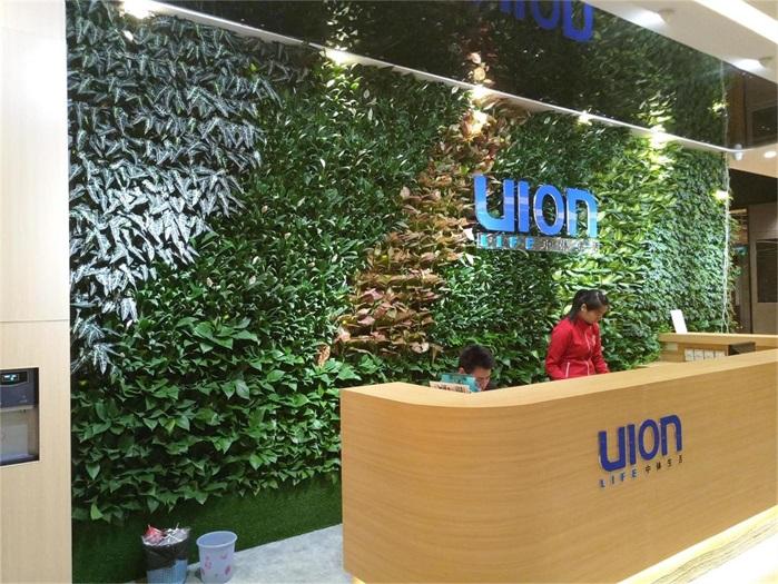 长沙植物墙 虚假植物墙
