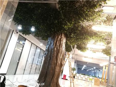 安徽仿真植物厂家&安徽仿真植物墙