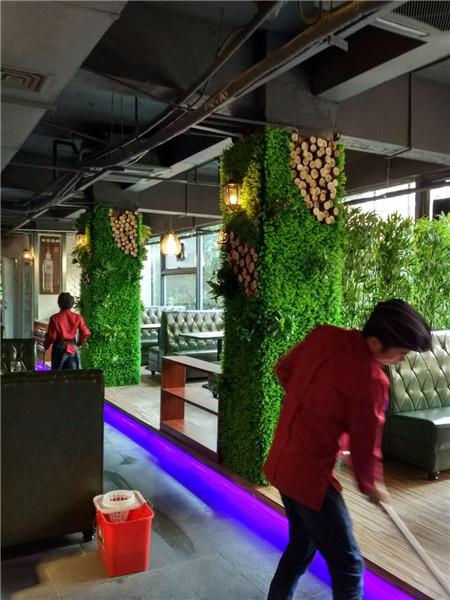 东莞仿真植物墙-长沙仿真植物墙
