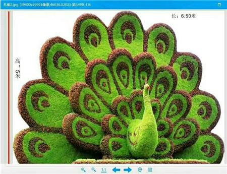 茂名仿真植物公司―虚假植物公司