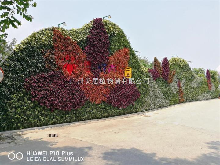 植物墙公司|虚假植物墙