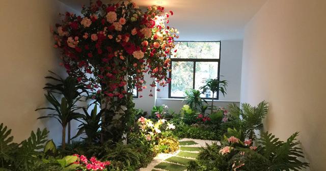 安徽仿真植物墙|虚假植物墙