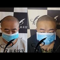 四川纹发机构