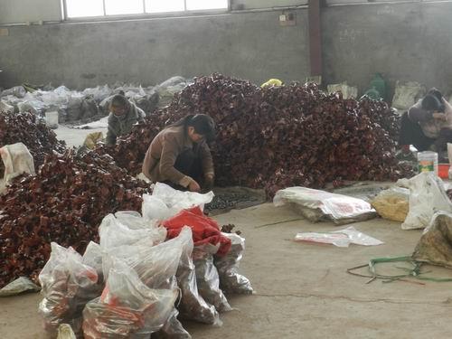最新河北孟村国标建筑扣件生产厂家价格5