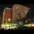 專業網站設計--惠州網頁設計公司
