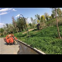 新疆绿化工程