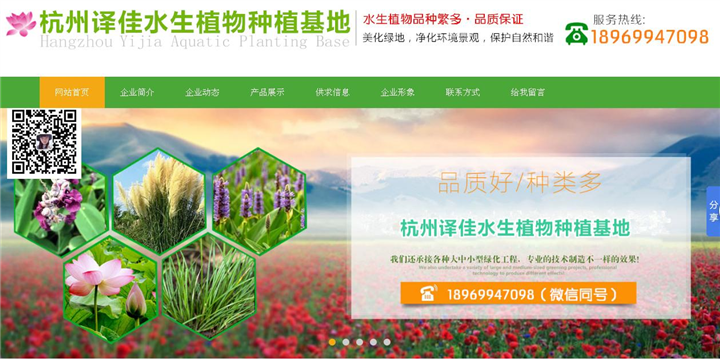 浙江译佳水生植物种植基地_龙岩网站建设