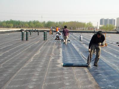 �K#�L河源防水卷材�S家|河源防水卷材加工