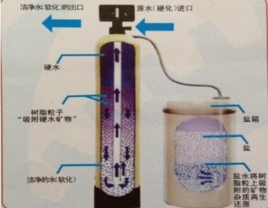 双效蒸发器 三效蒸发器 降膜蒸发器 蒸发器