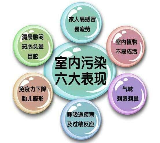 广州学习除甲醛