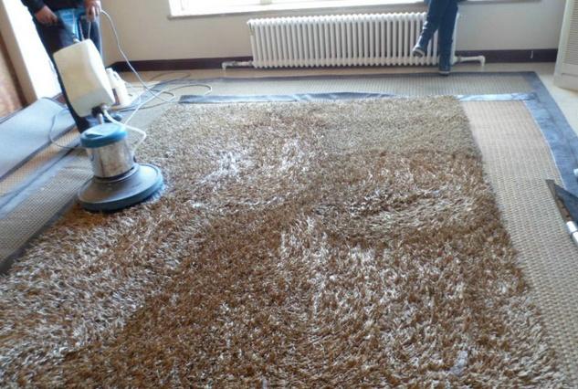 广州专业清洗地毯公司