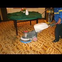 专业清洗地毯