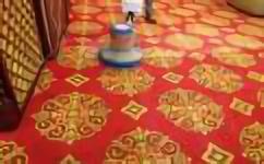 酒店清洗地毯